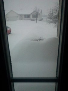 Here's a view out my front door last yesterday. See why I am on the computer now?